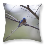 Happy Song Throw Pillow