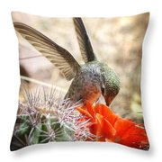Happy Thoughts  Throw Pillow