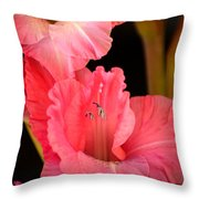 Happy To Be Glad Throw Pillow
