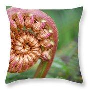 Hapuu Fern Throw Pillow