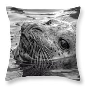Harbor Grey Throw Pillow