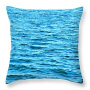 Harbor Markers Throw Pillow