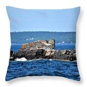 Harbor Rocks Throw Pillow
