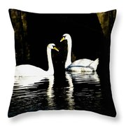 Harbor Swans Throw Pillow