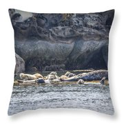 Harbour Seals Resting Throw Pillow