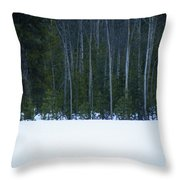 Hard Line Winter Throw Pillow