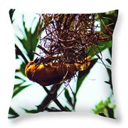 Hard Working Bird Throw Pillow