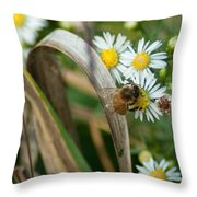 Hard Working Drone Fly Throw Pillow