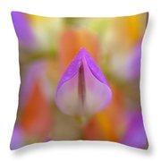 Harlequin Lupine Throw Pillow