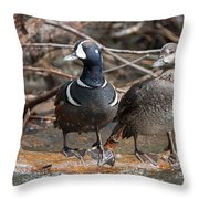 Harlequin Pair Throw Pillow