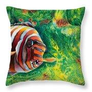 Harlequin Tuskfish Throw Pillow