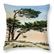 Harmony Of Nature Throw Pillow
