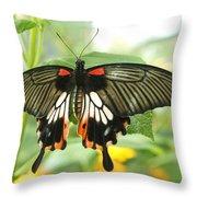 Harmony Throw Pillow