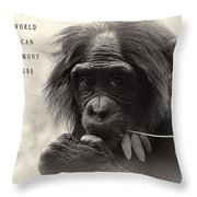 Harmony With Nature Throw Pillow