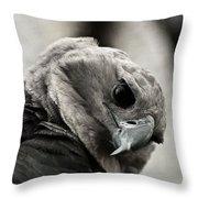 Harpy Eagle Closeup Throw Pillow
