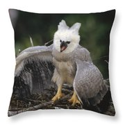 Harpy Eagle Threat Posture Amazonian Throw Pillow