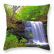 Harrison Wright Early Fall Throw Pillow