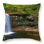 Harrison Wright Falls And Pool Throw Pillow