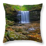 Harrison Wright Falls In Early Fall Throw Pillow