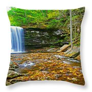Harrison Wright Falls Panorama Throw Pillow