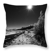 Harsh Reality Throw Pillow