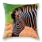 Hartman Zebra Throw Pillow