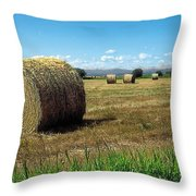 Harvest 3 Throw Pillow