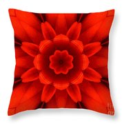 Harvest Bloom Throw Pillow