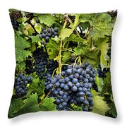 Harvest Divine Throw Pillow
