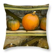Harvest Display Throw Pillow