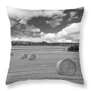 Harvest Fly Past Black And White Square Throw Pillow