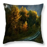 Harvest Moon Another Starry Night Throw Pillow