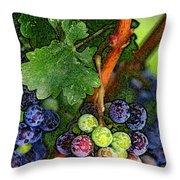 Harvest Time 1 Throw Pillow