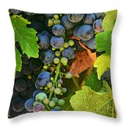 Harvest Time 2 Throw Pillow