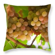 Harvest Time. Sunny Grapes II Throw Pillow