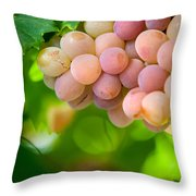Harvest Time. Sunny Grapes Viii Throw Pillow