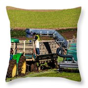 Harvesting Spinach Throw Pillow