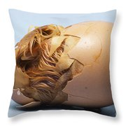 Hatching Chicken Throw Pillow by Tom McHugh