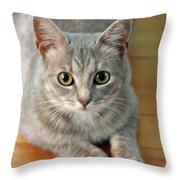Hattie The Kitty Throw Pillow