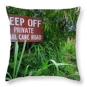 Haul Cane Road Throw Pillow