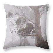 Haunted Forest. Nuwara Eliya. Sri Lanka Throw Pillow by Jenny Rainbow