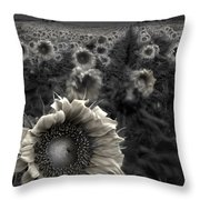 Haunting Sunflower fields 1 Throw Pillow by Dave Dilli