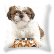 Havanese With Dog Bowl Throw Pillow