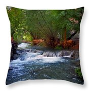 Havasu Creek Throw Pillow