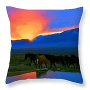 Have A Heart For Wild Horses  Throw Pillow