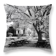 Have A Picnic Throw Pillow