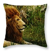Having A Break Throw Pillow