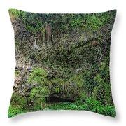 Hawaii Fern Grotto Throw Pillow