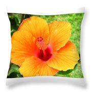 Hawaii Orange Hibiscus Throw Pillow