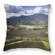 Hawaiian Pineapple Fields Throw Pillow